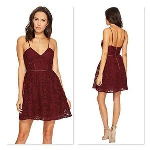 NWT! BB Dakota Sutton Fit and Flare Lace Dress